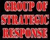 G.S.R. Mil/Sim (Group of Strategic Response)