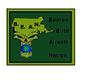 B.E.A.N. Boston elite airsoft nation